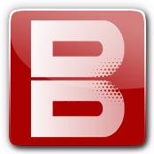 Bangin E-Liquid Logo