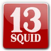 13 Squid E-Liquid Logo